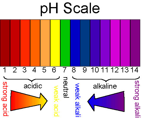 Ph Balance Food Chart  Dr Akilah  Celestial Healing Wellness Center