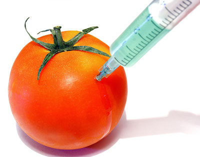 many argue genetically altered foods are not safe for consumption To explain why scientific organizations and regulatory agencies had declared ge foods safe,  that it screwed up the dna of the altered  while not genetically.