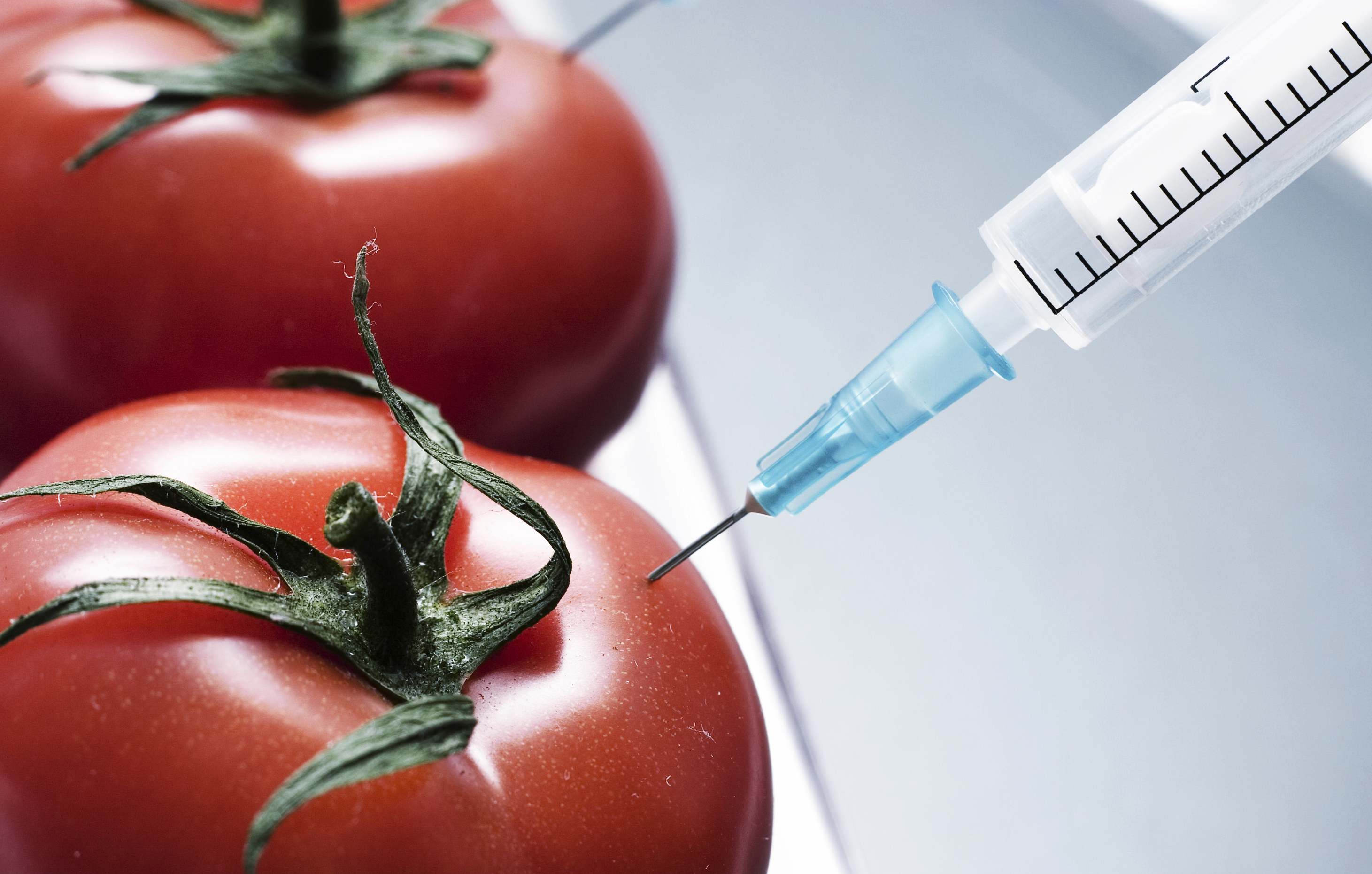 An argument against genetically modified organism gmos